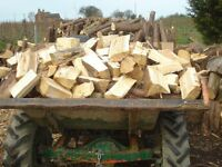 logs for wood burner or fire pit / Chiminea