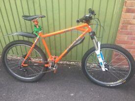 Dialled bikes Prince albert