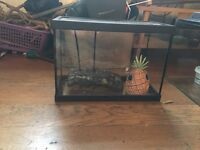 Medium size fish/ terrapin tank great working order free to collector