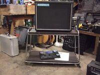 "Magnum 1x12"" extension speaker cabinet/stage monitor"