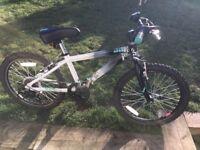 "Raleigh Zero Boys Bike 20"""