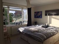 Super King Size Room In Modern Flat Share