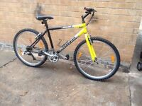 Mens GIANT Lightweight Mountain Bike in Good Condition