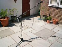 microphone and stand with lead