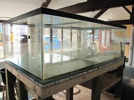 Very LARGE Fish Tank - 6' x 4' x 2'