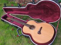 Tanglewood TSM3 Michael Sanden Master Design Electro-Acoustic Guitar - Excellent condition with case