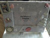 Disney Wedding photo frame +wish jar