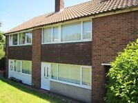 4 bedroom house in Thompson Road, Hollingdean