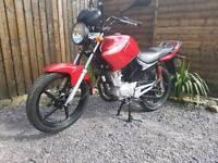 Beautiful YAMAHA YBR 125cc