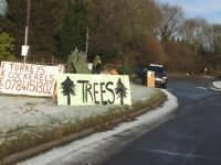 Cheapest Christmas Trees in Worcestershire