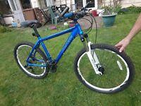 Mens Carrera Mountain Bike - Medium