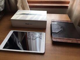 Ipad mini 1, silver 16Gb