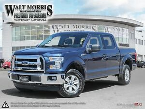 2016 FORD F 150 XLT: LOCALLY OWNED, 4X4