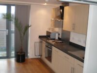 studio apartment , modern,clean in great city centre location. No agency fees