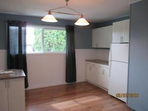 3 Bedroom Suite in Family Neighborhood