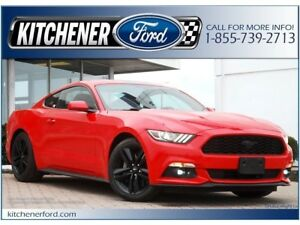 2016 Ford Mustang EcoBoost ONLY 25K KM'S!/RECAROS/19 RIMS/6 S...