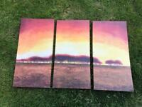 3 piece canvas print