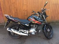 Yamaha YBR 125 *Excellent Condition & Low Miles*