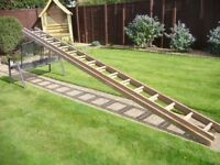 13' wooden extension ladder
