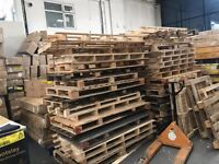 Free Palets to collect Bigger then europallets