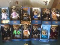 12 Meerkats