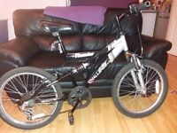 """Challenge Xtreme thunder boys mountain bike, 20"""" wheels with good tred, good condition."""