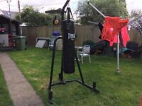 Confidence Heavy Duty Boxing Punch Bag Stand and Everlast Everflex freestanding punch bag