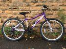 New British Eagle Neo 24 Rigid PURPLE Kids Bike RRP £184.99