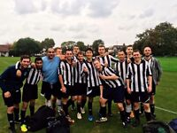 Brent FC - FOOTBALLERS WANTED - Saturday 11 aside league