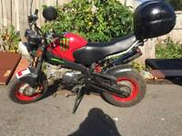 Skyteam Monkey bike 125 cc manual