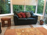 2 Seater Green Leather Sofa - FREE!