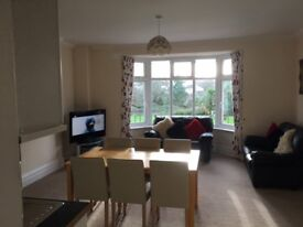 Paignton Youngs Park Road . 2 bedroom apartment furnished suit professional couple.