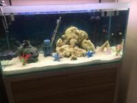 Marine tank and led light and filter eheim pro