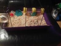 Hamster cage £15