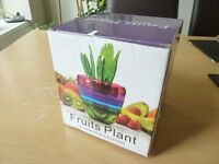 Fruits Plant Multi Kitchen Tool Set - Cuts, Squeeze & more tool