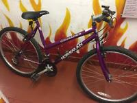 Crusader Norseman ladies bike