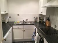 Double room in Cheltenham for single professional