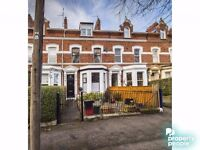 Excellent 1 Bedroom Property located just off the Ormeau Road - Available Immediately