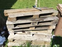6x pallets free for collection