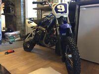 Skyteam 125 cc pitbike