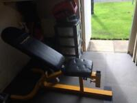Weights Bench with Leg Curl and Preacher