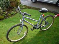 Ladies Townsend Bicycle