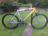 "Raleigh incognito 21 speed mtb,21"" alloy frame,shimano gripshift gears,suntour"