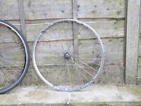 700c rear road bike wheel - mach omega hub shimano tiagra 7 8 9 10 speed cassette