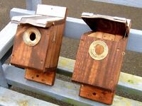 Homemade Tit Bird boxes ,Squirrel proof entrance .