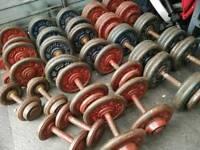 Cast iron commercial fixed dumbbells 375 kg