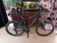 Saracen 21 speed mountain bike