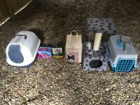 Kitten scraper, litter, carrier, scratch post, Food