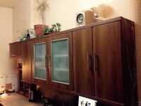 Kitchen cabinets with doors and shells