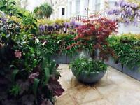 Experienced qualified Garden Designer and Planting Specialist
